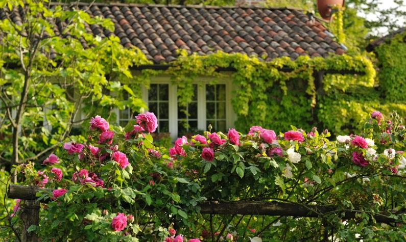 Piemonte – Huiselijke Bed & Breakfast met zwembad en bloementuin